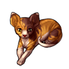 719-tabby-sphynx-cat.png