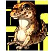 880-leopard-gecko-plush.png
