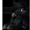 908-black-horse-plush.png