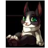 984-tuxedo-rabbit-plush.png