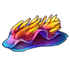 1532-rainbow-nudibranch.png
