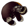 1569-spotted-manatee.png
