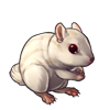 1630-white-chipmunk.png