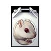 1647-chipmunk-box.png