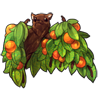 1825-orange-fruit-tree-bat.png