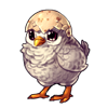 1832-hatchling-meep.png