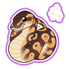 2379-magic-ball-python-sticker.png