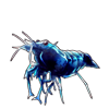2498-sapphire-shrimplet.png