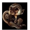 2601-vervet-pirate-monkey.png
