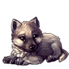 2609-gray-wolf-cub.png