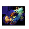 2652-blue-mandarinfish.png
