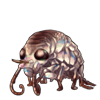 2655-brown-sandhopper.png