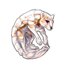 2659-white-shelhowl.png