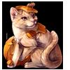 2999-pumpkin-ginger-tabby.png