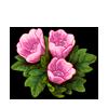 3079-bashful-blossoms.png