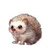 3099-albino-hedgehog.png
