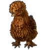 3151-brown-silkie-chicken.png