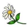 3174-lost-daisy.png