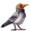 3383-pretty-pigeon-plague-bird.png