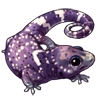 3409-gargoyle-gecko.png