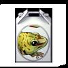 3411-gecko-box.png