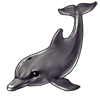 3412-gray-sonarphin.png