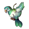 3577-parrot-bird-bloom.png