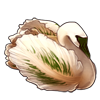 3579-swan-bird-bloom.png