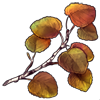 3788-twig-of-an-ancient-aspen.png