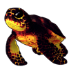 3923-blazing-ember-sea-tortle.png