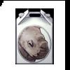 3930-rhinacorn-box.png
