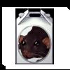 3945-dumbo-rat-box.png