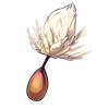 3992-dandy-lion-seed.png