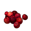 4017-cranberries.png
