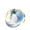 4070-frozen-poinsetter-seed.png