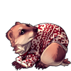 4081-japanese-cozy-badger.png