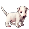 4321-white-bully-pup.png