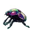 4450-dark-iridescent-scarab.png