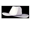 4486-cowboy-hat.png
