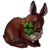 4505-four-leaf-irish-hare.png