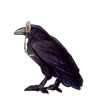 4900-monocle-wearing-raven.png