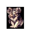 4937-merle-koala.png