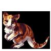4943-tortie-tree-kangaroo.png