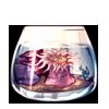 5020-anemone-aquarium.png