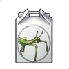 5114-phasmid-box.png
