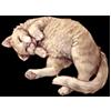 5168-cat.png