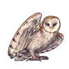 5173-natural-barn-owl.png