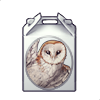 5177-barn-owl-box.png