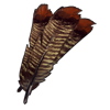 5198-bundle-of-turkey-feathers.png