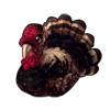5334-wild-turkey.png